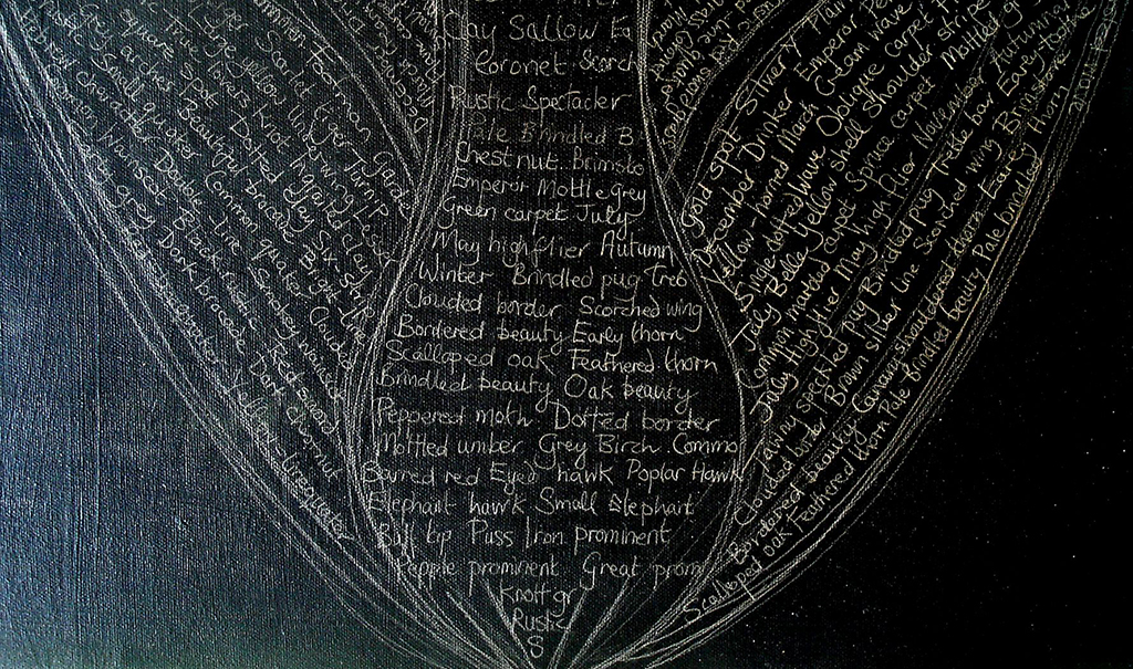 detail of Elephant Hawk-moth background featuring names of species that have visited our garden