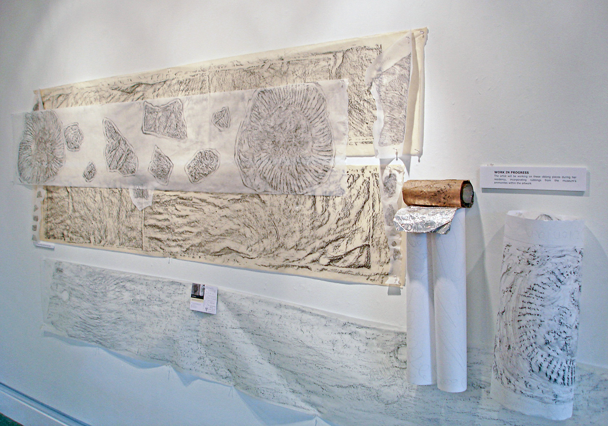 rubbings of fossils by Sue Purcell