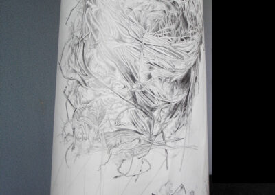 close-up of bird's nest scroll drawing