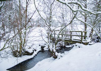 Nant-y-Dernol, January 2013