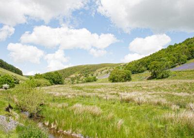 Looking north-west towards Esgair y Graig from near Trafelgwyn, June 2014