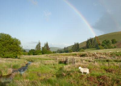 Looking south-east from near Trafelgwyn, June 2014