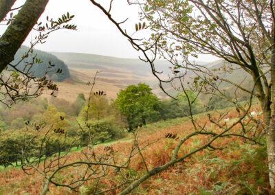 view across Dernol