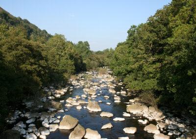 Afon Elan