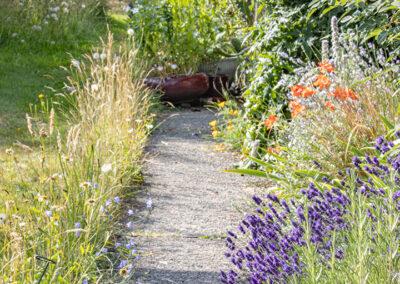 Glandernol garden front path, July